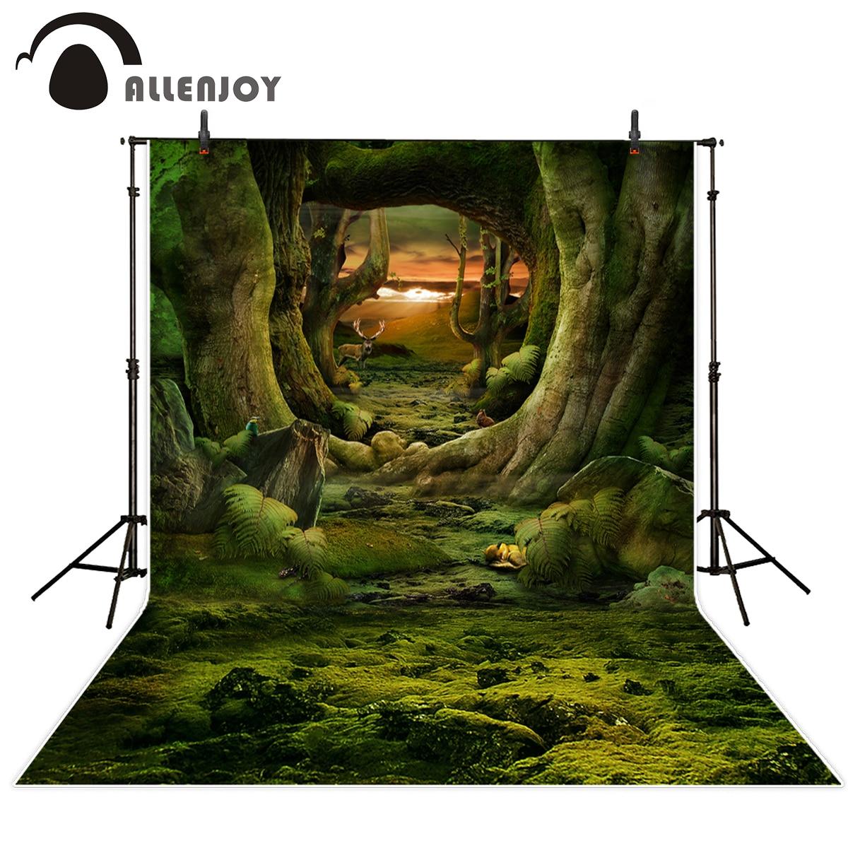 Allenjoy camera photography profissional Sunset Grassland Original forest Backgrounds for photo studio computer printed vinyl цена