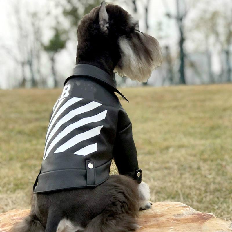 Diagonal zipper revers veste en cuir locomotive pet vêtements retour avec blanc imprimé lettres logo schnauzer veste à glissière automne