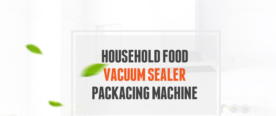 food vacuum sealer (1)