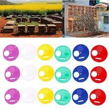 Fournitures apicoles 20pc en plastique abeille nid porte/entrée disque/abeille ruche Nuc boîte entrée porte outil équipement pratique produit