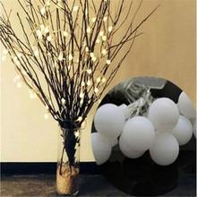 https://ae01.alicdn.com/kf/HTB1vMcRKbuWBuNjSszgq6z8jVXaM/5M-28Led-Garland-Balls-Outdoor-String-Lights-Festoon-Light-Bulbs-Flash-Warm-white-Guirlande-Lumineuse-Verlichting.jpg_220x220.jpg