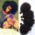 Mongolian Afro Kinky Curly Hair Cheap 6A Human Virgin Hair Mongolian Kinky Curly Hair 4Pcs Lot Free Shipping Human Hair Weaves