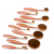 10 unids Rosa cepillo de Dientes de Oro Poder Fundación Pincel de Maquillaje Colorete Maquillaje Pinceles Set Kits Cepillo Ovalado Multiusos Pincel de Maquillaje