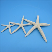 Happy Kiss 3pcs starfish Finger Sea Star Sea Fish Beach Coastal Ornaments For Home Party Wedding Decoration Craft Gift 6-13cm