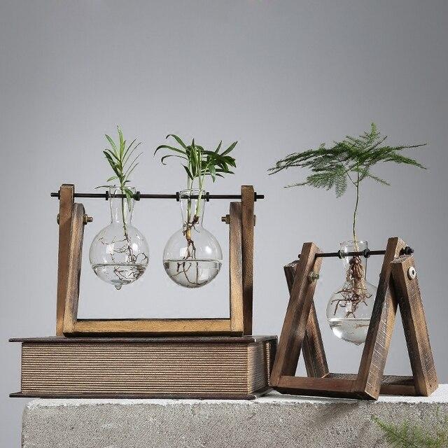 Creative Plant Water Hydroponic Money Plant Green Glass Flower Vase