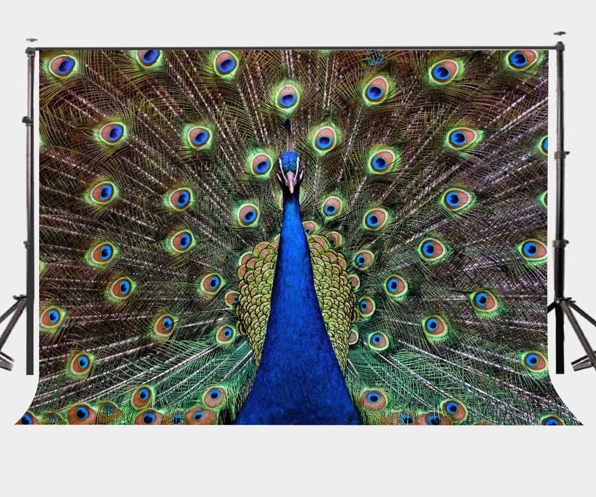 7x5ft Backdrop Beautiful Peacock Feathers Photography Background Photo Video Studio Props