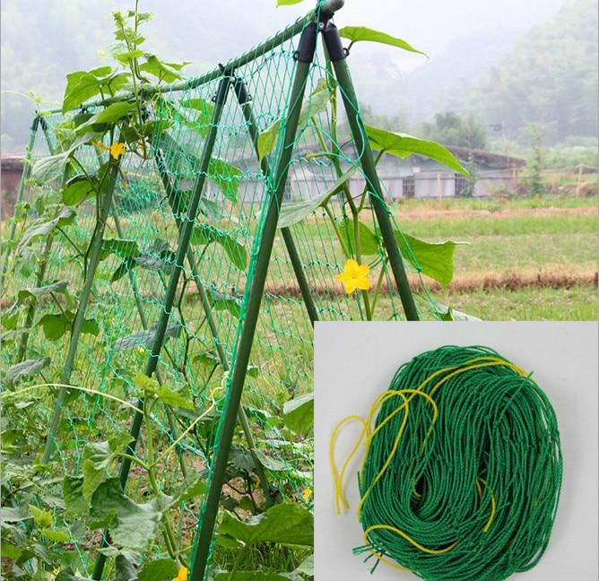 Millipore Ivy Climbing Frame Home Gardening Net Fruit Plants Fence Plastic Nylon Net 1.8*1.8M/2.7M/3.6M Mesh Net 10CM Grid ...
