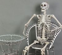 6 Feet Halloween 170cm Skeleton Figure Plastic Life Size Skeleton Haunted House Escape Horror Props Decorations