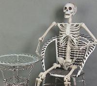 6 Feet Halloween 165cm Skeleton Figure Plastic Life Size Skeleton Haunted House Escape Horror props Decorations Toy