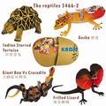 Бесплатная доставка 4 шт. 3D рептилий 5466-2 воспитательная игрушка, КАДИС ПЛАСТМАССОВЫЕ игрушки животных 3d головоломки