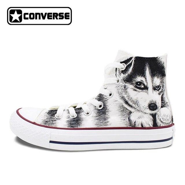 converse perro