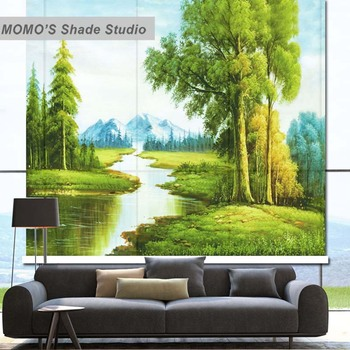MOMO Roller Blinds Painting Window Blinds Shades Blackout Zebra Blinds Fabric Roller Shutter Curtains Custom Size, Alice 55-57