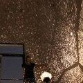 3 cores estrela lâmpada mestre criativo romântico a luz da noite de sono lâmpada atmosfera personalidade presente brinquedo para casais free grátis