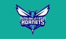 Charlotte Hornets Flag  3×5 FT 150X90CM Banner copper grommets Polyester NBA flag 150,  free shipping