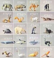 חיות בר צעצוע חיות ג 'ונגל ג' ירפה זברה אריה פיל דגם פעולה דמויות דגם אוסף מתנה לתינוק ילדי קישוט