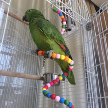 Parrot Toy Bouncing Cage Hanging Spiral Ladder Parakeet Toys Parrots Toys Bouncings Home Drop Shipping