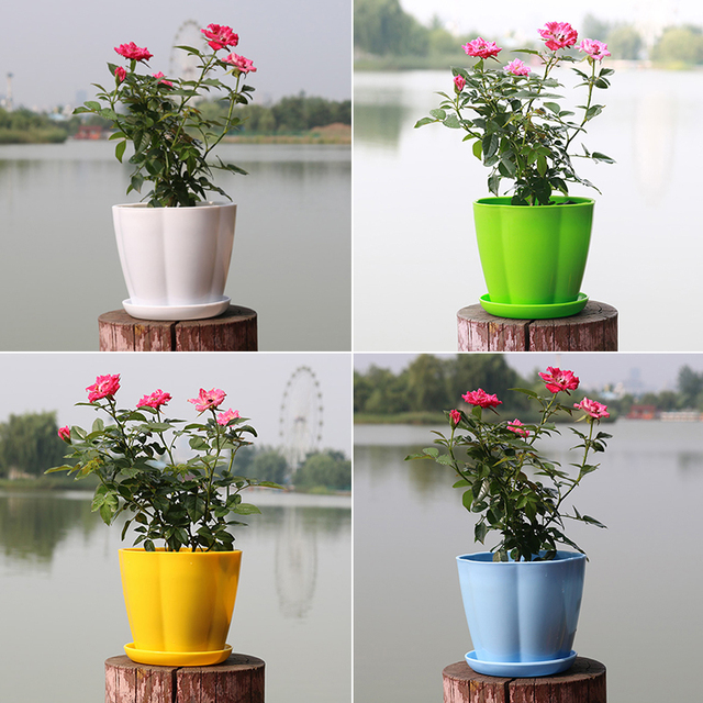 Plastic Flower Pots Resin Colored Round Green Plants Multi Meat Imitation Porcelain Pumpkin Type