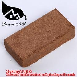 650 g coconut brick sterile universal matrix nutritive soil planting soil soil amelioration professional soil.jpg 250x250