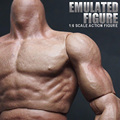 "12"" Muscular Action Figure Body 1/6 Soldier ZC Toy for 16 Scale Hot Toys Head SCULPT of Figures Accessories"