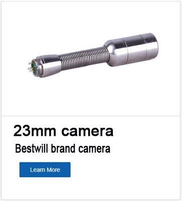 bestwill 1
