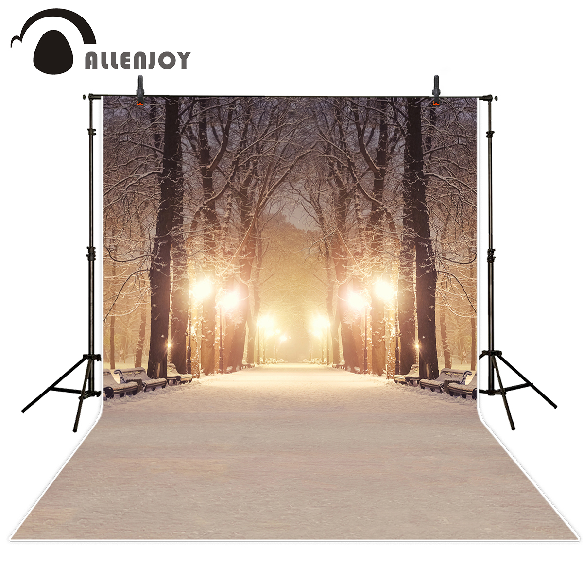 Allenjoy new arrivals photography backdrop Snowy winter in the town hazy road trees background photo studio camera fotografica the woman in the photo