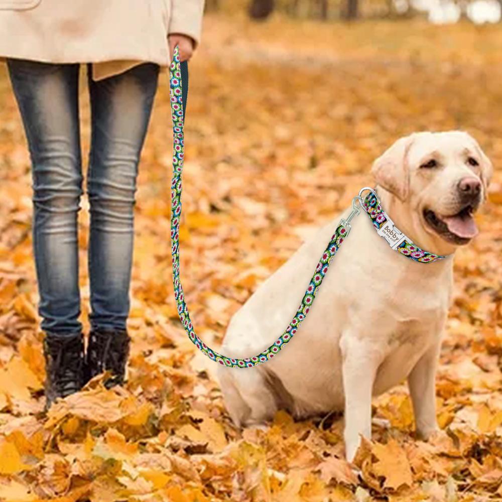 Collar de Nylon personalizado para perros 11