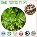 Orgánicos Polvo de extracto de Artemisia Annua Artemisinina Cápsula 500 mg * 300 unids