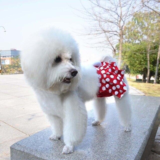 Perro sanitaria pantie ropa para perros encantadores Pantalones ...