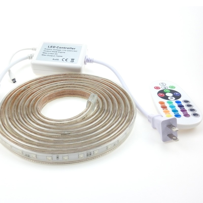 50m RGB LED Flex Strip Lights 220V Waterproof Addressable Ruban +24Keys Remote Controller MultiColor Changing 30m 20m 14m 10m 5m 5m dc12v 5050smd 150leds ldp6803 ic magic dream color ip66 silicone waterproof flex led strip 133 programs rf remote controller