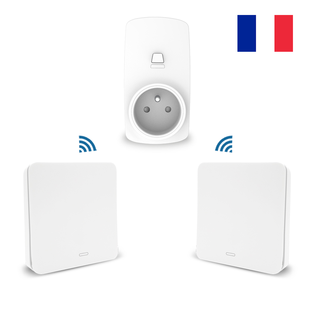 Outstanding French Type Wireless Socket Remote Control Outlet Plug 10A Self Wiring Digital Resources Instshebarightsorg