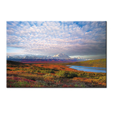 Wholesale Canvas Paintings Wall Art HD Prints Framework Home Decor Beautiful scenery series Pictures/Abstract-130