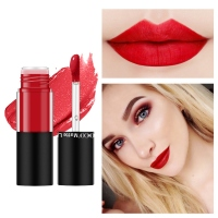Moisturizing Matte Lip Gloss Set Waterproof Non stick Cup Easy To Color Liquid Lipstick Kit