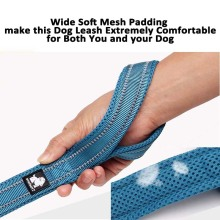 Truelove Soft Padded Mesh Dog Leash Reflective Nylon