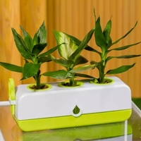 Domu Kreatywny kwiat Warzywa Balkon Inteligentny system Hydroponika bez Ziemi Automatycznego Nawadniania Roślin Rosnących Przedszkole Pot
