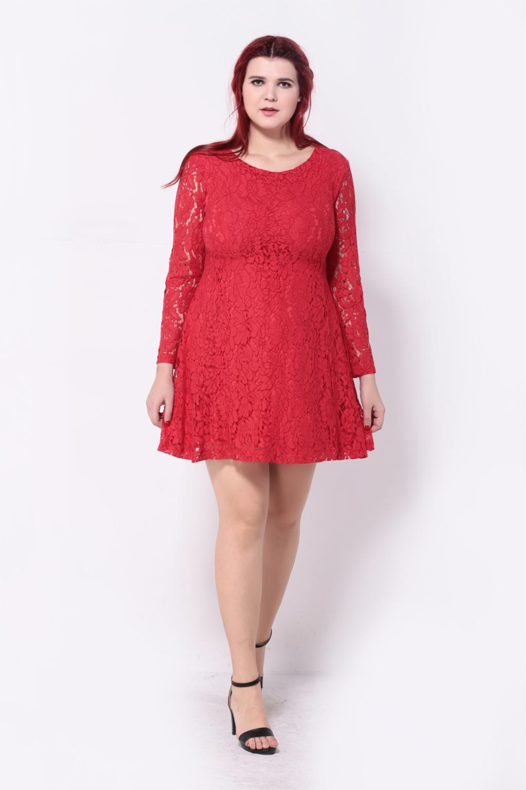 Vintage Premium Crochet Floral Lace Skater Dress Elegant Long Sleeve ... c314bd7f6937