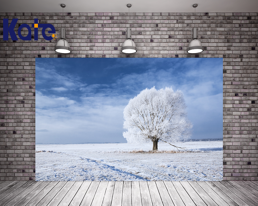 Thick Cloth Backdrops For Photography Frozen Under A Tree In The Snow Blue Sky Foto Background Empty Snow Scenic Kate Background blue sky чаша северный олень