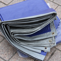 Ultralight 100g Sqm 8mx10m Blue And Gray Tarpaulin Short Time Waterproof Canvas Outdoor Dust Cloth Rain