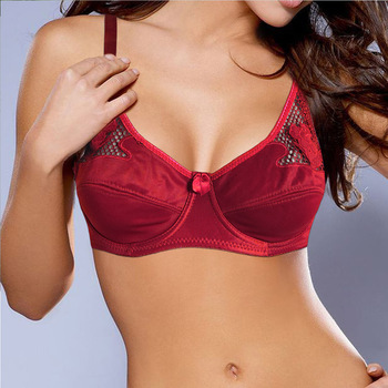 Bras For Women Floral Sheer Embroidery Bra Adjusted-straps