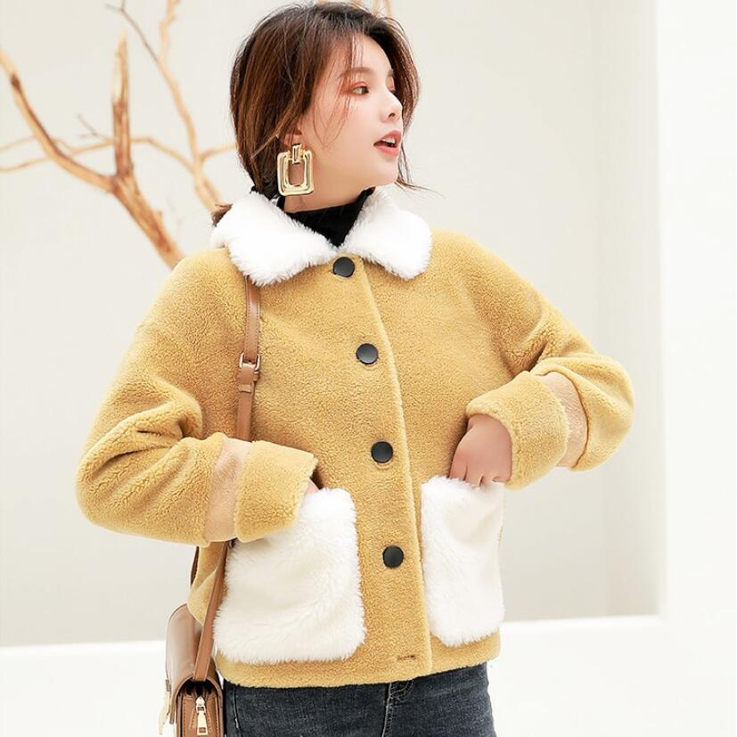 Cashmere particles coat 2019 winter new female Faux Fur Jacket imitation lamb fur coat short plush thick Teddy Coat