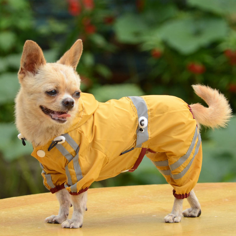 Dog Raincoats из Китая