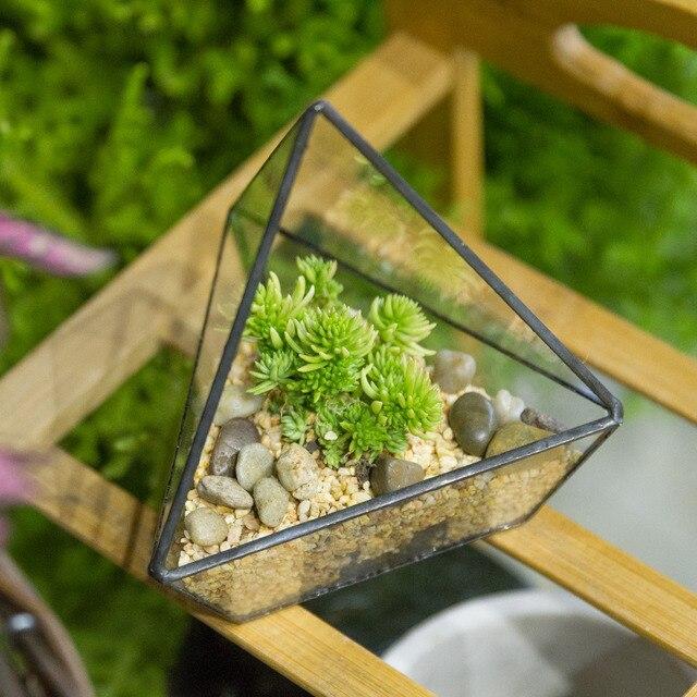 Moderno tre lati di vetro contenitore piante balcone fiori piante grasse vaso da giardino - Piante decorative da giardino ...