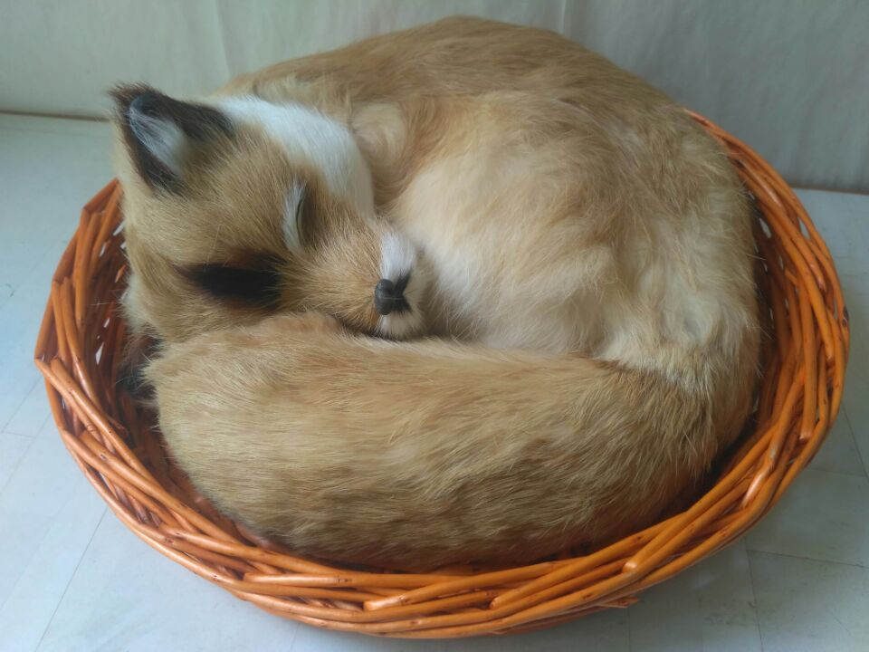 big simulation fox model polyethylene&furs natural colour sleeping fox doll in a basket about 30x27cm 1283 big creative simulation fox model polyethylene