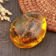 1 PC Fashion Natural Insects Amber Stone Ornament Originality Scorpions butterfly Bee Crab Decorations DIY Crafts Pendant Gift(China)