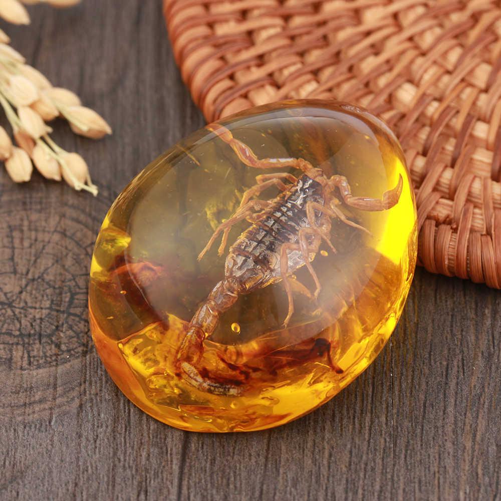 1Pcs Fashion Alami Serangga Amber Batu Permata Ornamen Orisinalitas Kalajengking Butterfly Lebah Kepiting Dekorasi Kerajinan Diy Hadiah