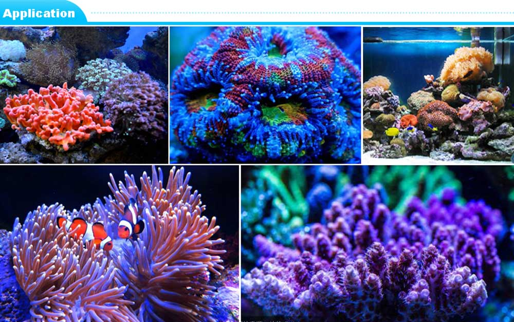 Remote or Touch control 180W LED Aquarium Light Timer Control Dimmable lamp Freshwater and Saltwater Coral Reef Grow Fish Tank (12)