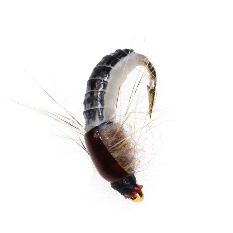Preto corpo woolly worm marrom caddis ninfa
