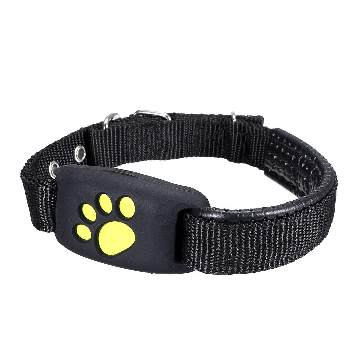 Dog Collar With Gps Locator