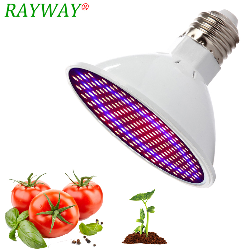 Phytolamp Full Spectrum E27 LED Grow Lamp 54/72/200 LED Light For Plant Grow Light Red Blue LED For Plants Flower Growth Bulb