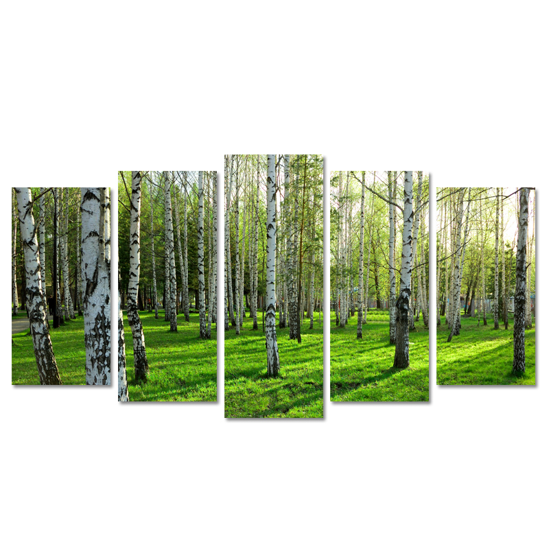 Modern Wall Art Home Decoration Printed Oil Painting Pictures No Frame Canvas Prints 5 Panel Beautiful Birch Trees Forest no frame canvas