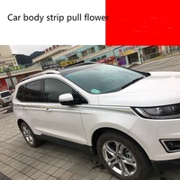 Pull Flowers Body Color Strips Car Special Car Stickers Waist line Modified Decorative For Ford sharp